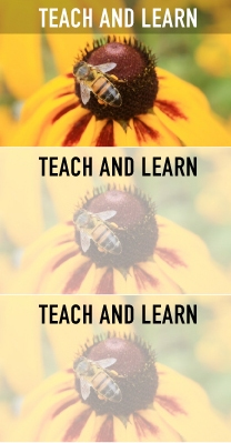 Teach and Learn
