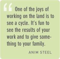 Anim Steel quote