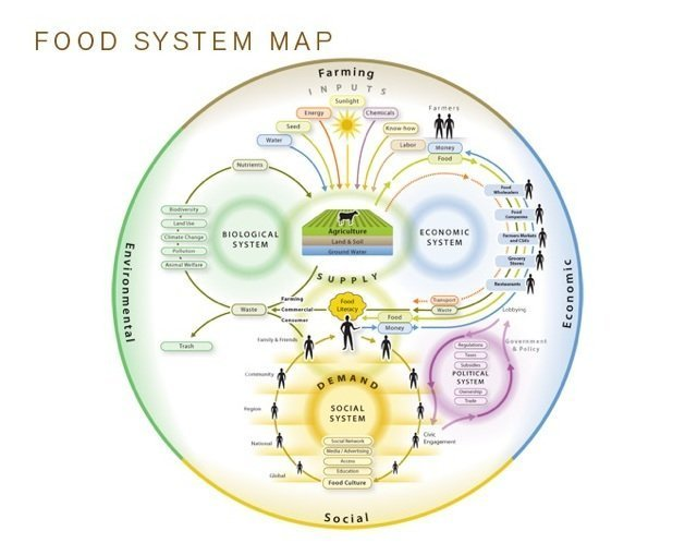 diagram of food systems