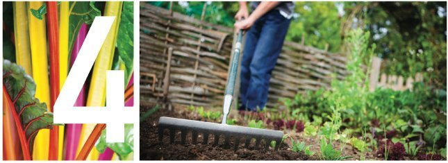 Man raking in garden
