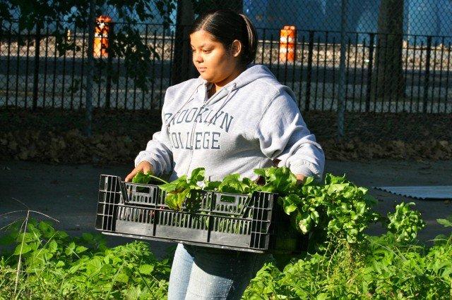 Young woman at urban farm