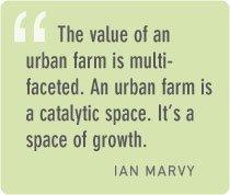 Ian Marvy quote